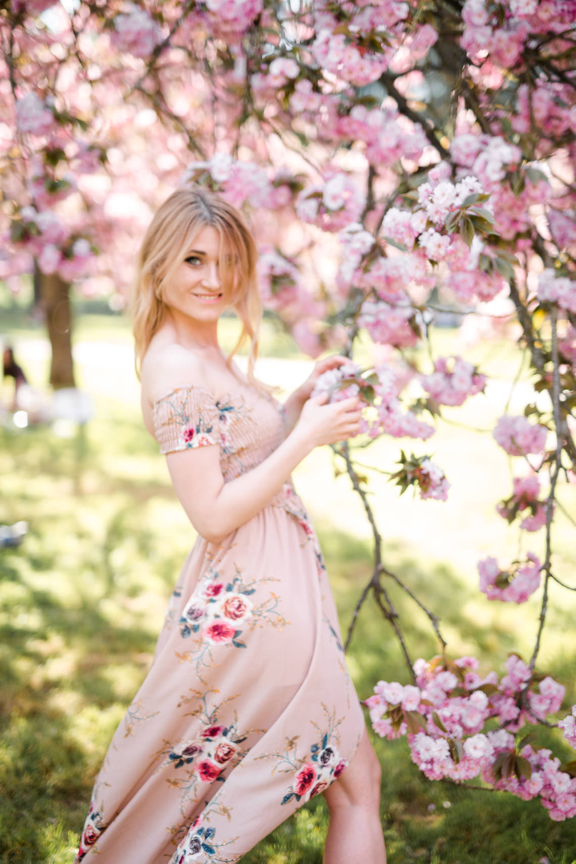 seance photo portrait cerisiers japonais