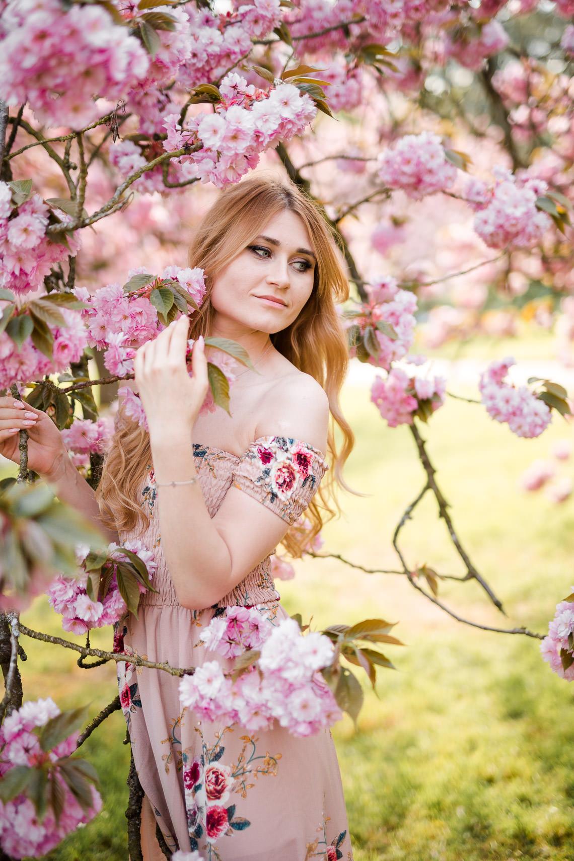 photographe hauts de seine cerisiers